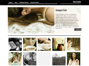 Web Template for Photographer WordPress Download