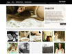 Web Template for Photographer WordPress WordPress Format
