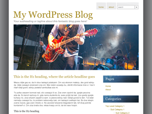 Musician Band Web Template WordPress Download